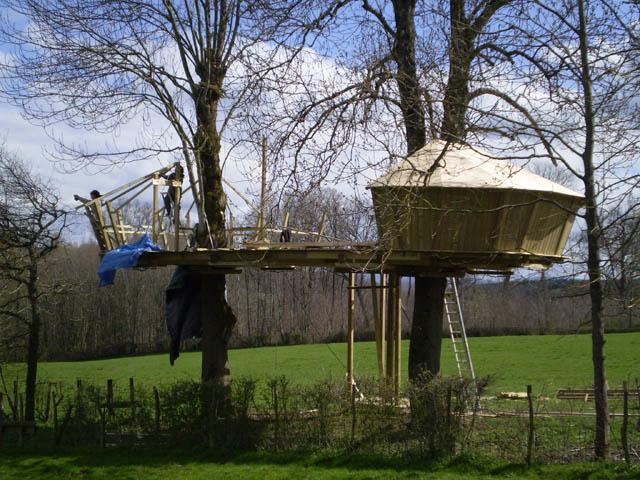 construction-cabane-dans-arbre