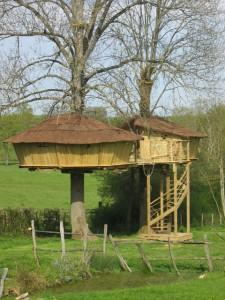 cabane-arbre-bourgogne-1