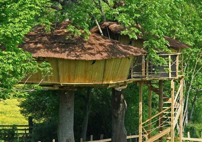 Cabane dans les arbres en Bourgogne