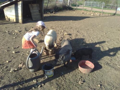 Découverte de la ferme, bonjour Lydie et José...